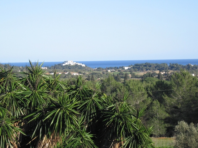 view-to-the-sea-San-Juan-finca