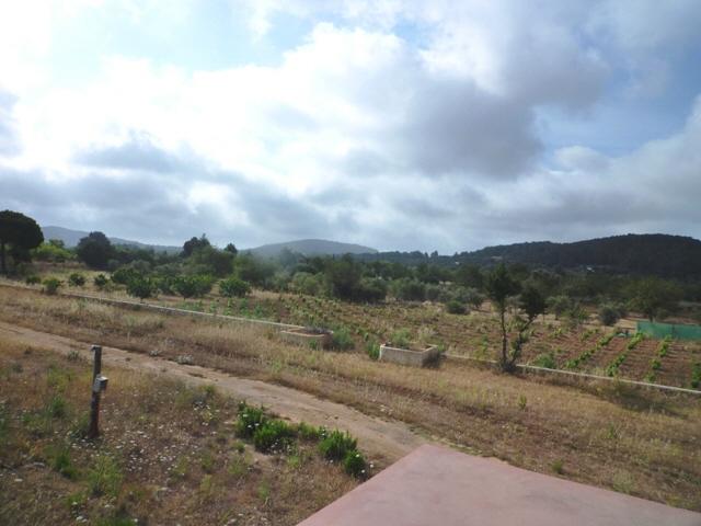 Garten-San-Carlos-Villa