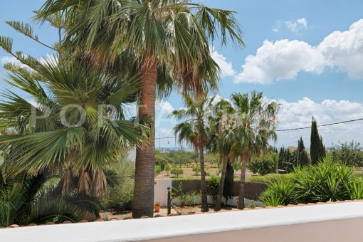campo-nice house-Ibiza