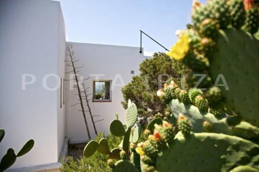garden-wonderful modern villa-magnificent setting-Na Xamena