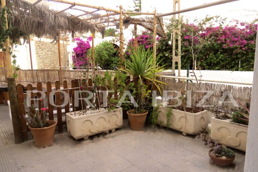 terrace apartment Ibiza