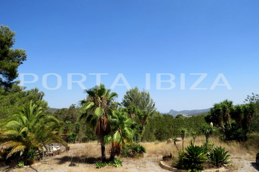 Large property with a lot of potential to renovate near San Agustín