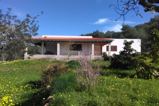 Beautiful finca with unfinished house surrounded by ots of vegetation in Santa Eulalia del Río
