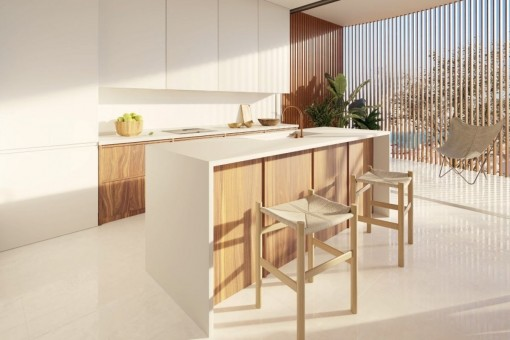 Modern kitchen with cooking islan